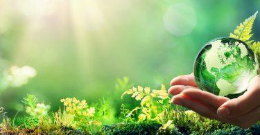 76% dos portugueses preocupados com ambiente e alterações climáticas
