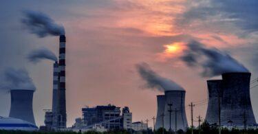Portugal vai ter mercados locais voluntários de carbono