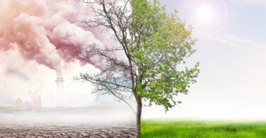 adaptação alterações climáticas