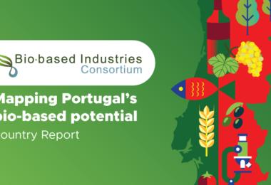 Portugal pode liderar a transição para a bioeconomia na Europa