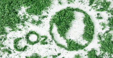Emissões de carbono globais voltar a atingir níveis pré-pandemia