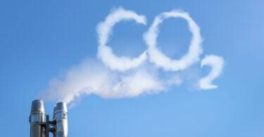 Startup britânica quer transformar carbono em ração animal