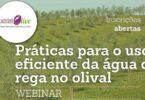 """O grupo operacional """"SustentOlive"""" vai realizar a 17 de junho, às 18h00, o webinar """"Práticas para o uso eficiente da água de rega no olival""""."""