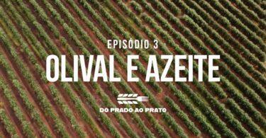 A mitigação das alterações climáticas no olival e no azeite é uma das práticas em destaque no terceiro episódio do 'Prado ao Prato'.